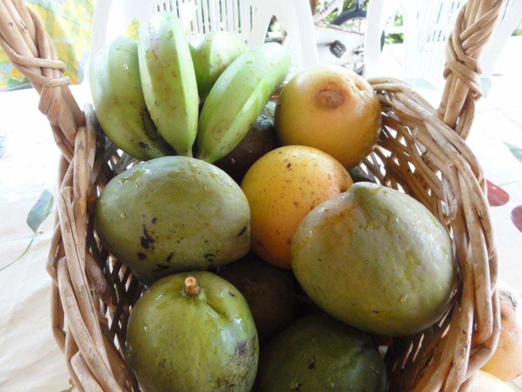 Fruits du jardin selon la saison